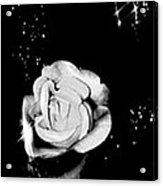 Sparkling Rose Acrylic Print by Gayle Price Thomas