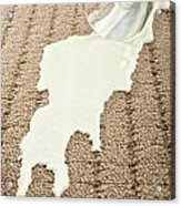 Spilled Milk On Carpet  Acrylic Print by Colin and Linda McKie