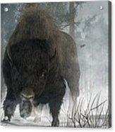 Spirit Of Winter Acrylic Print by Daniel Eskridge
