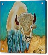 Spirit White Buffalo Acrylic Print by Mike Holder