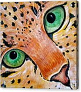 Spotted Acrylic Print by Debi Starr