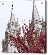Spring At The Temple Acrylic Print by Chad Dutson