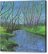 Spring Awakening II Acrylic Print by Garry McMichael