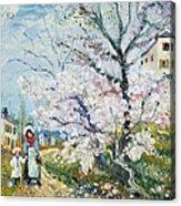 Spring Blossom Acrylic Print by Henri Richet