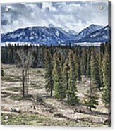 Spring In The Wallowas Acrylic Print by Adele Buttolph