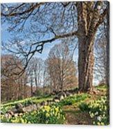 Spring Path Acrylic Print by Bill Wakeley