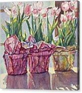 Spring Shadows Acrylic Print by Jan Landini