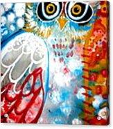 Sprinkles Acrylic Print by Amy Sorrell