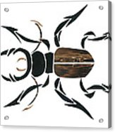 Stag Beetle Going Tribal Acrylic Print by Earl ContehMorgan