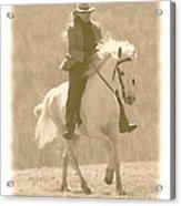 Stallion Strides Acrylic Print by Patricia Keller