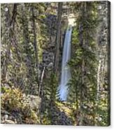Stanley Falls At Beauty Creek Acrylic Print by Brian Stamm