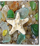 Starfish Fine Art Photography Seaglass Coastal Beach Acrylic Print by Baslee Troutman