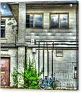 Stay Local Acrylic Print by MJ Olsen