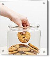 Stealing Cookies From The Cookie Jar Acrylic Print by Elena Elisseeva