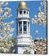 Steeple With Clock Acrylic Print by Allan Morrison