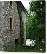 Stone And Ivy Acrylic Print by S G