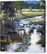 Stony Creek Acrylic Print by Erin Rickelton