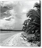 Storm Cloud On The Horizon Acrylic Print by John Rizzuto