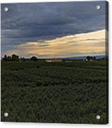 Storm Over The Yakima Valley Acrylic Print by Mike  Dawson