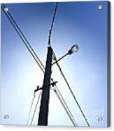 Street Lamp And Power Lines Acrylic Print by Bernard Jaubert