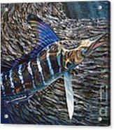 Striped Gem Acrylic Print by Jason Mathias