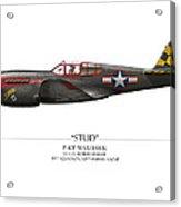Stud P-40 Warhawk - White Background Acrylic Print by Craig Tinder