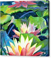 Styalized Lily Pads 3 Acrylic Print by Kathy Braud