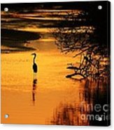 Sublime Silhouette Acrylic Print by Al Powell Photography USA