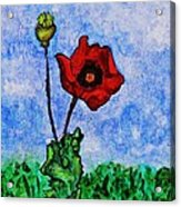 Summer Day Poppy Acrylic Print by Sarah Loft