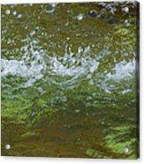 Summer Freshness - Featured 3 Acrylic Print by Alexander Senin