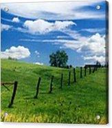 Summer Landscape Acrylic Print by Steve Karol