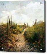 Summer Pathway Acrylic Print by John Rivera
