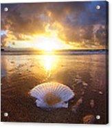 Summer Solstice Acrylic Print by Sean Davey