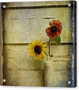 Summer Sunflowers Acrylic Print by Sari Sauls