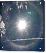 Sun Halo Acrylic Print by Lainie Wrightson