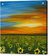 Sunflower Sunset - Flower Art By Sharon Cummings Acrylic Print by Sharon Cummings