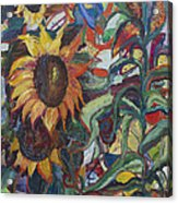 Sunflowers Acrylic Print by Avonelle Kelsey