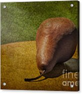 Sunlit Pear Acrylic Print by Susan Candelario