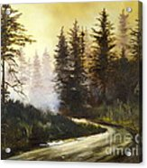 Sunrise In The Forest Acrylic Print by Lee Piper