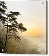 Sunrise In The Mist - D004200a-a Acrylic Print by Daniel Dempster