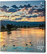 Sunrise On The North Payette River Acrylic Print by Robert Bales