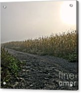 Sunrise Over Country Road Acrylic Print by Olivier Le Queinec