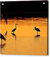 Sunset Silhouette Acrylic Print by Al Powell Photography USA
