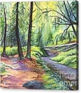 Sunset Stroll  Acrylic Print by Carol Wisniewski