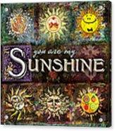 Sunshine Acrylic Print by Evie Cook