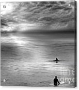 Surfing With The Dolphin Acrylic Print by Artist and Photographer Laura Wrede