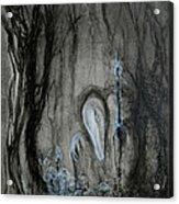 Swamp Shaman Acrylic Print by Christophe Ennis