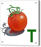 T Art Alphabet For Kids Room Acrylic Print by Irina Sztukowski