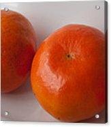 Tangerines3 Acrylic Print by Lena Wilhite