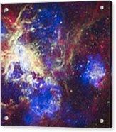 Tarantula Nebula Acrylic Print by Adam Romanowicz